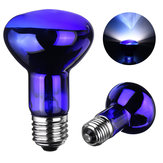 E27 25/40/50/60/75/100W R63 Blue Shell Emitter Lamp Heat Reptile Bulb Light AC220-240V