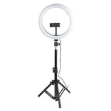 Original              10 Inch Dimmable LED Ring Light Photo Selfie Fill Light with Tripod Adjustable Phone Holder Tripod Head for Makeup Live Broadcast Video Shooting
