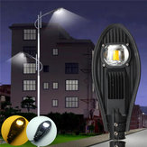 30W LED Warm White / White Road Street Flood Light Outdoor Passerella Giardino Yard lampada DC12V