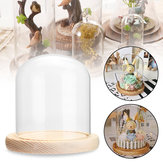 Clear Glass Dome Wooden Base Cloche Bell Jar Display Stand Micro Landscape DIY Vase Room Decorations