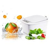 Household Mutifunction Ozone Fruit Vegetable Detoxification Machine Foods Meats Cleaner Sterilizer