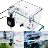 Aquarium Transparent House Incubator Box for Isolasjon Hatchery Cage Ekstern Hang-on Oppdretter Fisk Avl