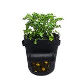 1 / 3db 26 / 38L burgonya termesztõ zsák zöldségfélék ültetõ táskák cserépnövényes táskák