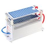 Gerador resistente do ozônio de AC110V 10g 10000Mg / H com tratamento das placas azuis