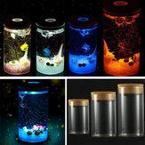 Bricolaje botella de vidrio cilindro paisaje micro musgo con coloridos LED luz plantas suculentas florero