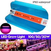 30W 50W 100W COB de espectro completo LED Planta Grow Light Growing Lámpara Flor hidropónica de verduras AC220V