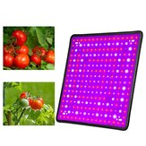 256 LED Grow Light Growing Lamp Full Spectrum For Indoor Flower Plant Hydroponic
