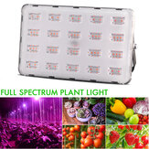 500W 100W LED Grow Light Hydroponic Full Spectrum Flower Bloom Indoor Outdoor Seeds Plantlamp AC220V