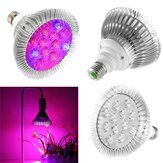 9W 12 LED E27 Red Blue Grow Lamp for Hydroponics Flowers Plants Vegetables