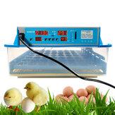 Kümes Hayvanları için Mini Otomatik Egg İnkübatör Akıllı Dönüş Sıcaklık Kontrolü