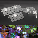 Acrylic Aquarium Coral Frag Plugs Rack Stand Bracket Holds Live Fish Tank Suction Cup