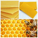 30Pcs Fondation en nid d'abeille Bee Cadres de cire de ruche épilation BeeMatériel d'entretien Bee Cadres de miel de peigne de ruche