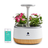 sPlant Smart Fresh Herb Garden Kit Intelligent Indoor Sprout LED Light Garden Four Flower Pot with App Remote Control Self Watering Technology