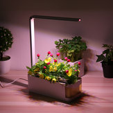 Indoor Herb Adjustable Garden Flower Grow Grow lampada Kit Planting Light Pot con finestra gialla visibile
