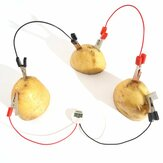 DIY Potato Powered Fruit Digital Clock Kit For Kids Children Science Learning Experience Toys