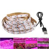 LED Grow Light Strip Full Spectrum 5V USB 2835 LED-kamerplanten groeien