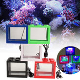 Mini USB LED Light Clear Fish Tank Mini boîte d'aquarium Bettas Office Desktop Decor