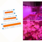 30 W / 50 W / 70 W High Power Volledige Spectrum LED Grow COB Light Chip voor Planten Groente AC110V / AC220V