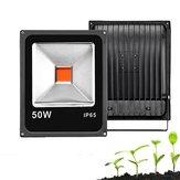 20W 30W 50W Full Spectrum COB LED rosną roślina powodzi światło wodoodporne dla roślin kwiatowych AC85-265V