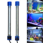 Aquarium imperméable à l'eau LED Light Bar Fish Tank submersible Down Light Tropical Aquarium Produit 5W 50CM