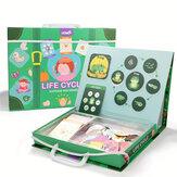 Rompecabezas de juguetes educativos para la primera infancia Rompecabezas de ciclo de vida de aprendizaje magnético Rompecabezas de juguetes educativos
