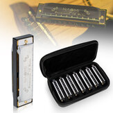 NAOMI 7PCS Blues Harmonica 10 fori C Key Blues Banda Set armonica con custodia