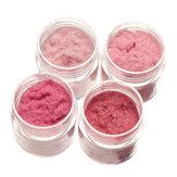 4 Warna Nail Dekorasi Powder Dust Velvet Dust