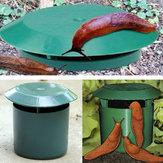 Honana HG-GA1 Ogród warzywny Bezpieczny pułapka na ślimaki Fizyka Środowiskowa limax Ślimak ślimak Traper