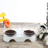 15 Degree Tilt Non-Slip Cat Elevated Bowls Pet Double Bowl for Feeding Container