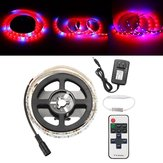 1M SMD5050 Red:Blue 5:1 Full Spectrum LED Grow Strip Light  Hydroponic Greenhouse Plant DC12V