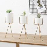 Oro alto treppiede Plant Iron Stand + ceramica vaso di fiori succulente Display decorazione del supporto cremagliera
