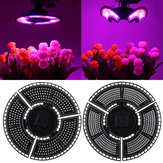 E27 LED Deformation Plant Light Waterproof Red and Blue Spectrum Plant Growth Light Greenhouse Seedling Planting Supplement Light