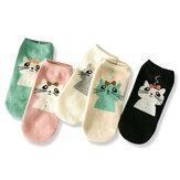 女性かわいい綿の漫画の靴下キャンディーバーのアンテナの猫の女性の靴下
