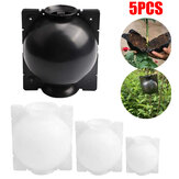 5PCS Plant High-Pressure Propagation Grafting Box Garden Tree High- Altitude Pressure Propagation Ball Rooting Propagator Cutting Grafting Rooting Box