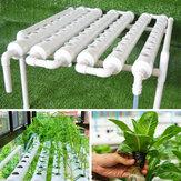 110-220V 54 Delikli Hidroponik Boru Sahası Büyümek Kit Derin Su Kültürü Dikimi Kutu Bahçe Sistemi Fidanlık Pot Hidroponik Raf