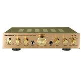 Amplificateur de puissance stéréo 2000 W 110 V 220 V Égaliseur 5 canaux Amplificateur de voiture Amplificateurs de cinéma maison Audio