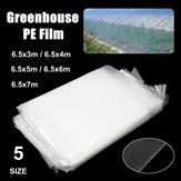 5 Size 200μ Heavy Duty Clear PE Greenhouse Film Reinforced Garden Plant Supply