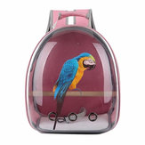 Pet Cat Parrot Bird Carrier Travel Respirable Transparent Space Capsule Sac à dos