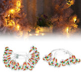 2M 3M Christmas Socks/Crutches Battery Powered LED Decorative Tree String Light for Festival Party