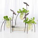 Geyik Hidroponik Konteyner Avrupa Süsler Şeffaf Çiçek Vazo Bitki Pot