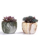 4 Adet / takım Seramik Doğal Taş Tarzı Çiçek Etli Dikim Pot Bahçe Dekor