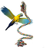 Pet Parrot Chew Rope Budgie Bell Bird Perch Coil Swing Cockatiel Cage Toys