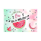 5x3FT 7x5FT Watermelon One in a Melon Birthday Photography Backdrop Studio Prop Background