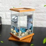 Mini Aquarium LED Beleuchtung Klarglas Aquarium Container Office Desktop Dekor!