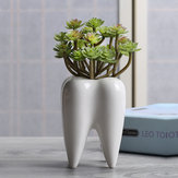 7x10cm Tooth Shape Flower Pot Succulent Plant Storage Ceramic Gardening Potted Creative Home Decor