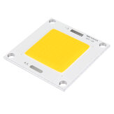 50W DIY LED COB Chip Daya Tinggi 40X40mm Bead Light Bulb Lampu Putih / Hangat Putih / Biru DC12-14V