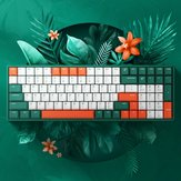 iQunix F96 Jungle Mystery 100 Keys 96% Layout NKRO USB Kablolu Kiraz MX Switch PBT Keycaps RGB Mekanik Oyun Klavye PC Laptop için
