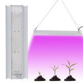 100W LED Grow Light Vollspektrum Hydroponic Indoor Plant Veg Bloom Wachstumslampe