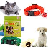 Köpek ve Kedi Universal Pet Protection Boyun Kayışı için Anti Pire ve Kene Yaka