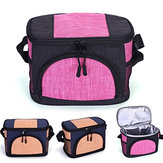 6L Insulated Portable Insulated Pouch Lunch Bag Waterproof Student Food Storage Bag